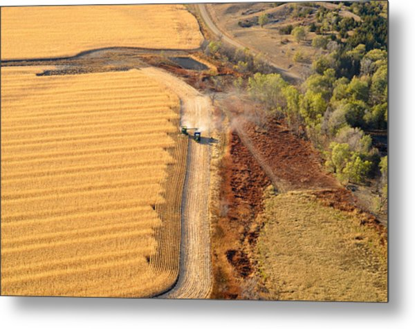 Many Acres To Harvest Metal Print