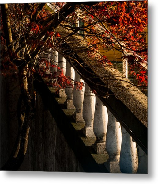 Maple And Concrete Metal Print