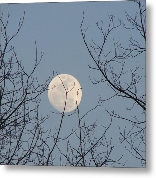 March Moon Metal Print
