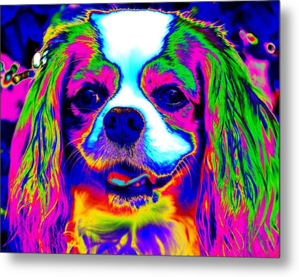 Mardi Gras Dog Metal Print