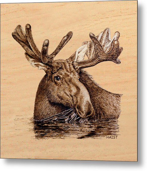 Marsh Moose Pillow/bag Metal Print