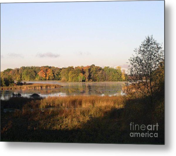 Marsh Morning Metal Print by Mendy Pedersen