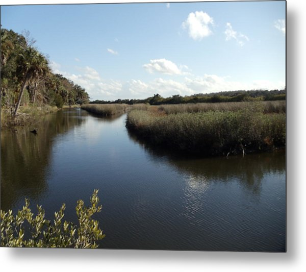Marsh Reflection Metal Print