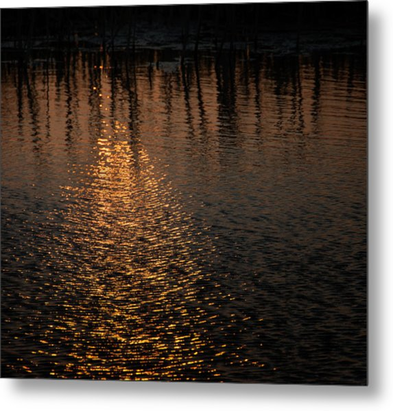 Marsh Sunrise Metal Print
