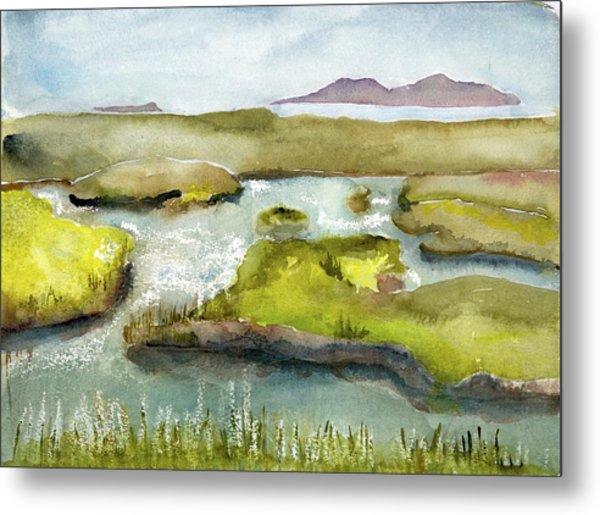Marshes With Grash Metal Print