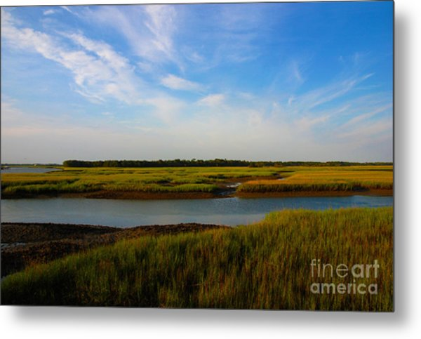 Marshland Charleston South Carolina Metal Print