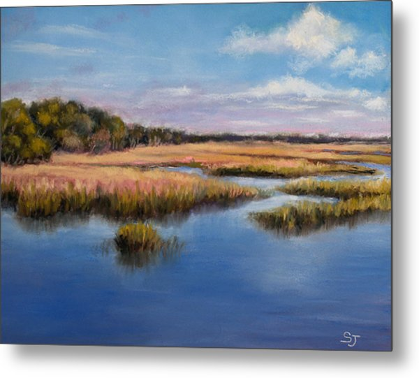 Marshland In Florida Metal Print