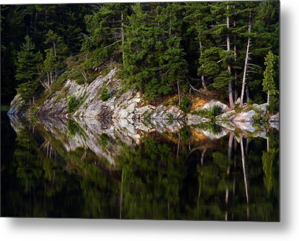 Massasauga Park Reflection Metal Print
