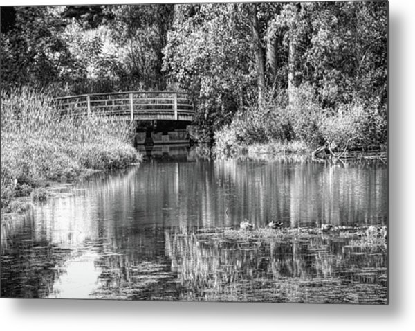 Matthaei Botanical Gardens Black And White Metal Print