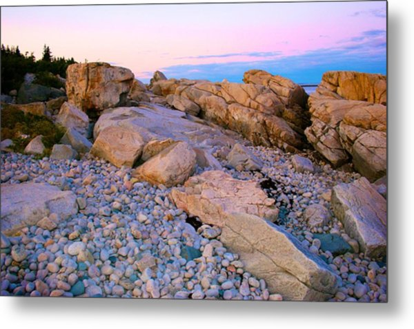Mauve Light On Schoodic Penninsula Metal Print