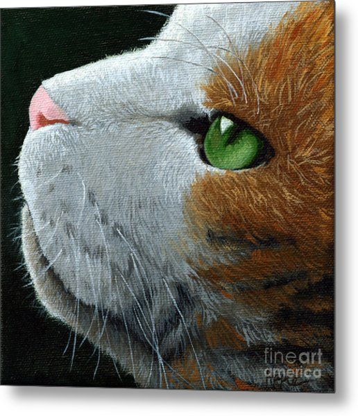 Max - Neighbor Cat Painting Metal Print by Linda Apple