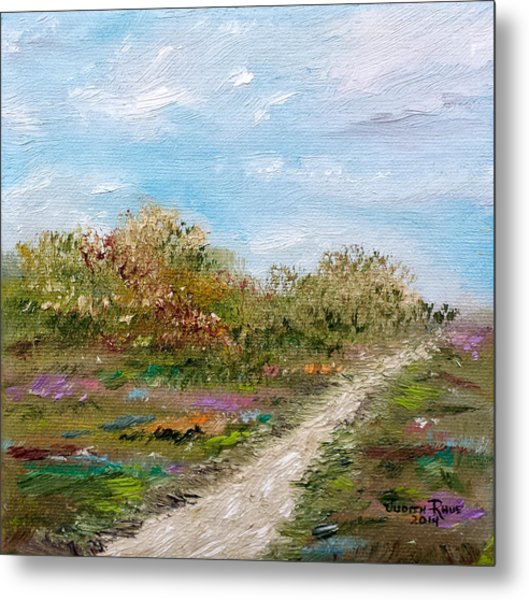 May The Road Rise Up To Meet You Metal Print