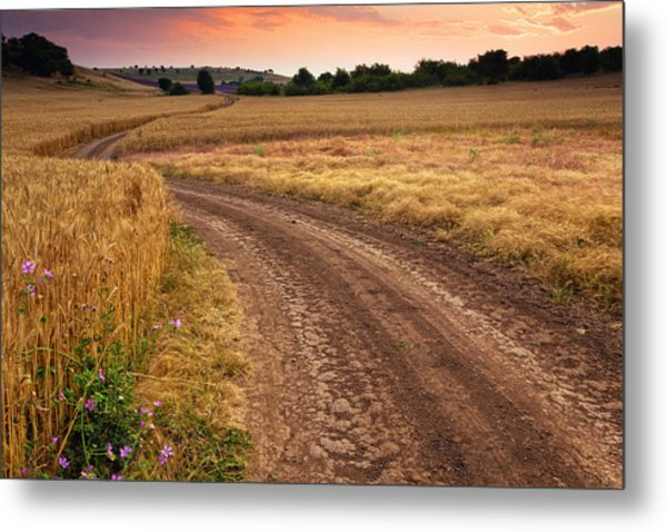 Mazzy Road Metal Print