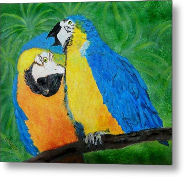 Macaw Parrot Love Metal Print