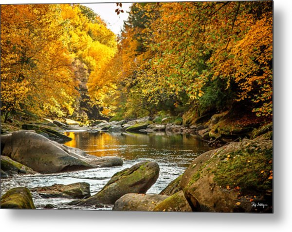 Mcconnell's Mill State Park Metal Print