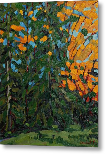 Mcmichael Forest Wall Metal Print