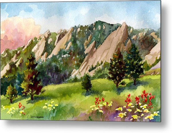 Meadow At Chautauqua Metal Print