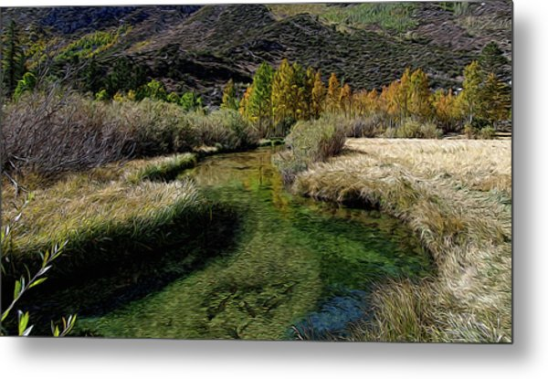 Meadow Creek Metal Print