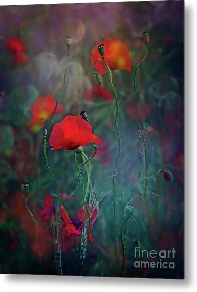 Meadow In Another Dimension Metal Print