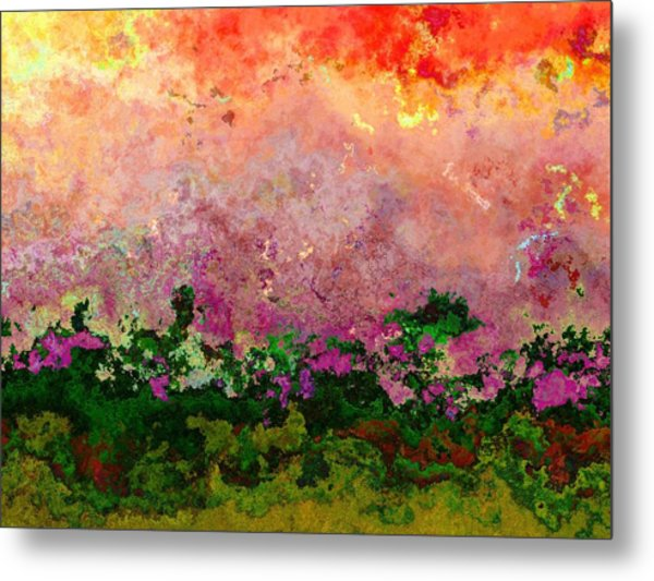 Meadow Morning Metal Print