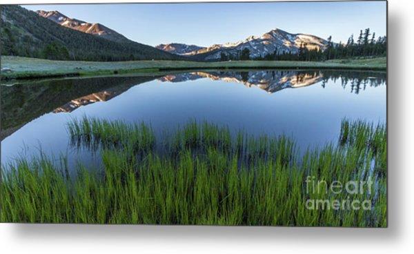 Meadow Reflections  Metal Print