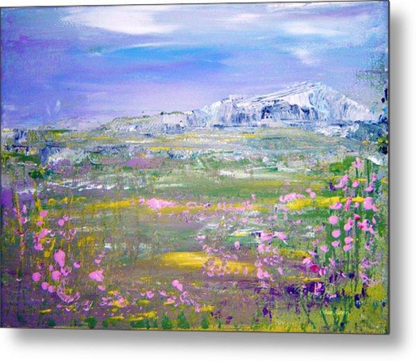 Meadow Sky By Colleen Ranney Metal Print