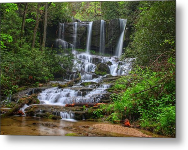 Meet Virginia...in South Carolina Metal Print