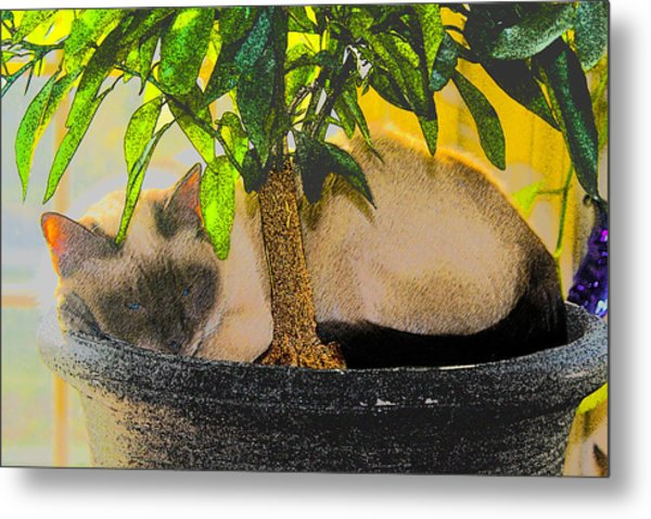 Meezer Tree Metal Print