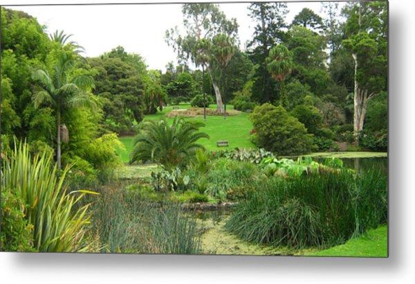 Melbourne Botanical Gardens Metal Print