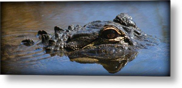 Menacing Alligator Metal Print