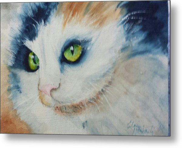 Meow II Metal Print by Elaine Frances Moriarty