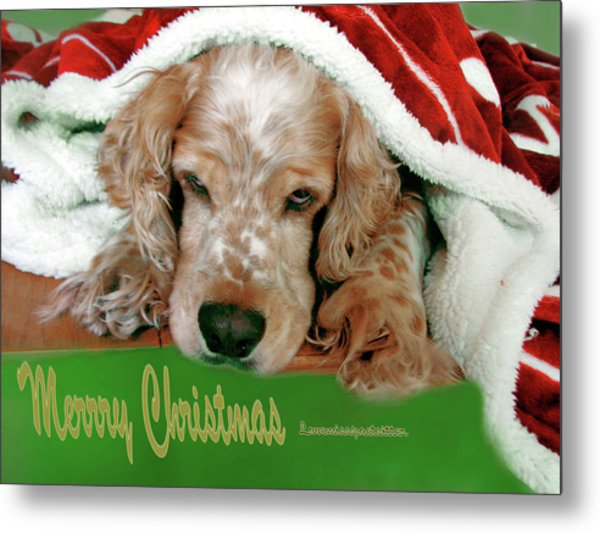 Merry Christmas Art 32 Metal Print