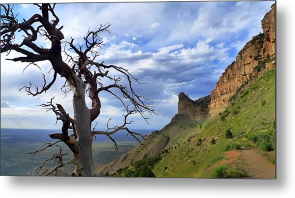 Metal Print featuring the photograph Mesa Verde Mood by Skip Hunt
