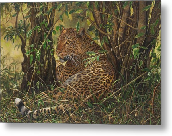 Metal Print featuring the painting Midday Siesta by Alan M Hunt