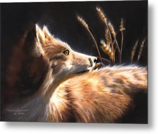 Midnight Fox Metal Print