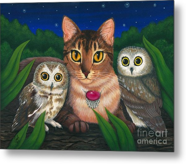 Midnight Watching - Abyssinian Cat Saw Whet Owls Metal Print