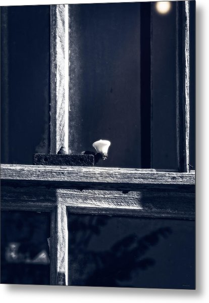 Midnight Window Metal Print