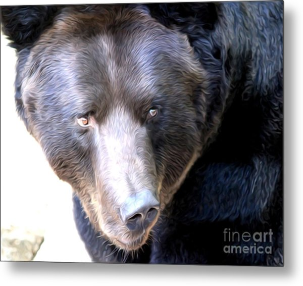 Mighty Black Bear Metal Print