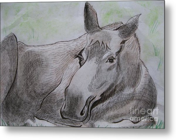 Mildred The Moose Resting Metal Print