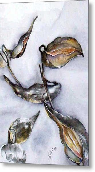 Milkweed In Winter Metal Print