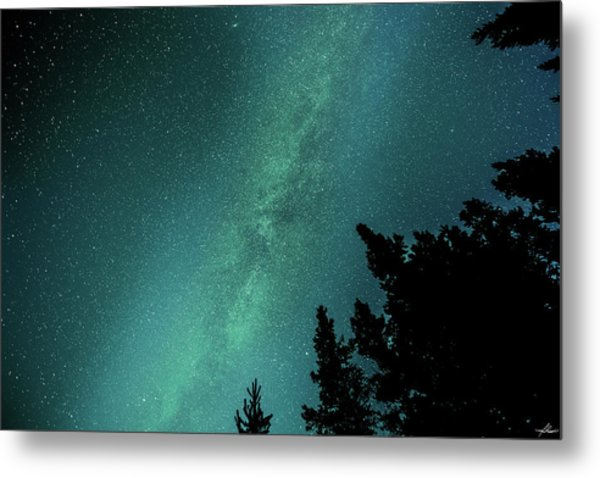 Milky Way Above The Trees Metal Print
