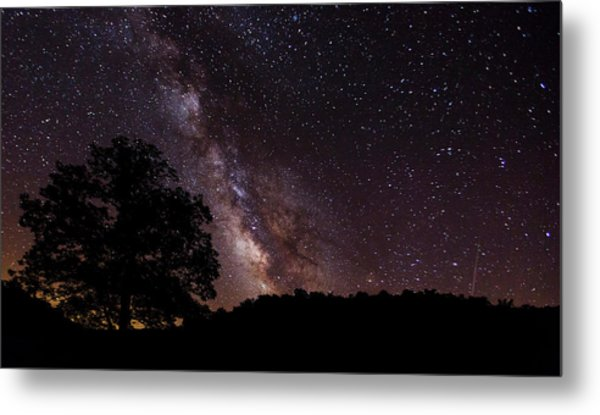 Milky Way And The Tree Metal Print