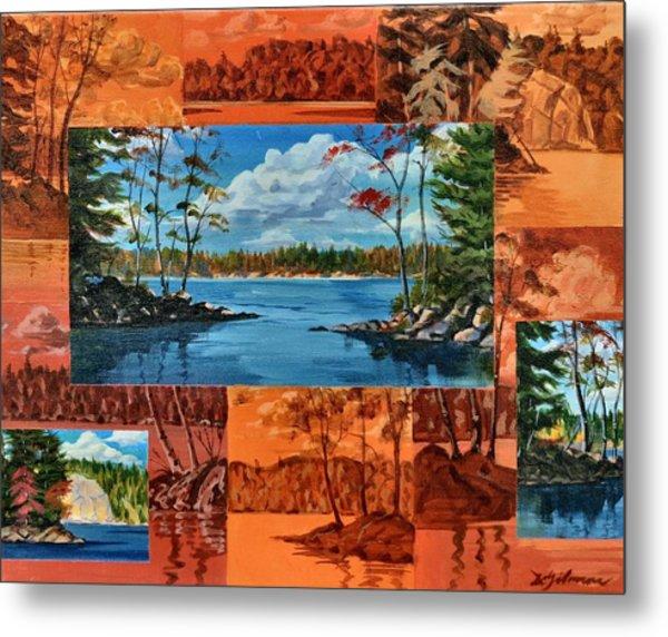 Mink Lake Looking North West Metal Print