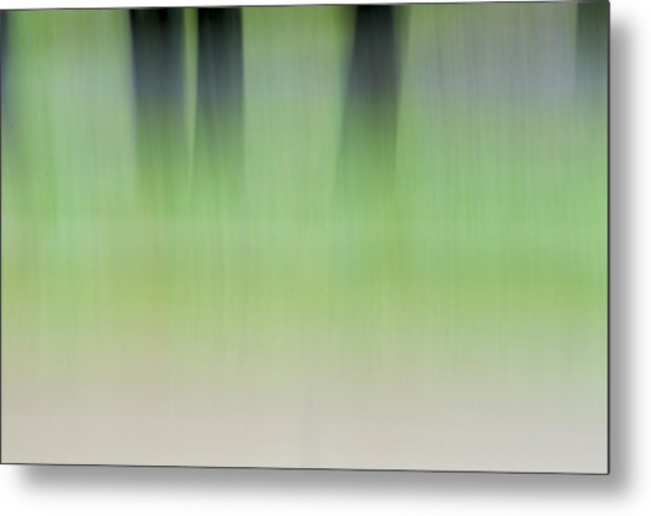 Mint Slice Metal Print