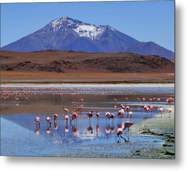 Metal Print featuring the photograph Mirage by Skip Hunt