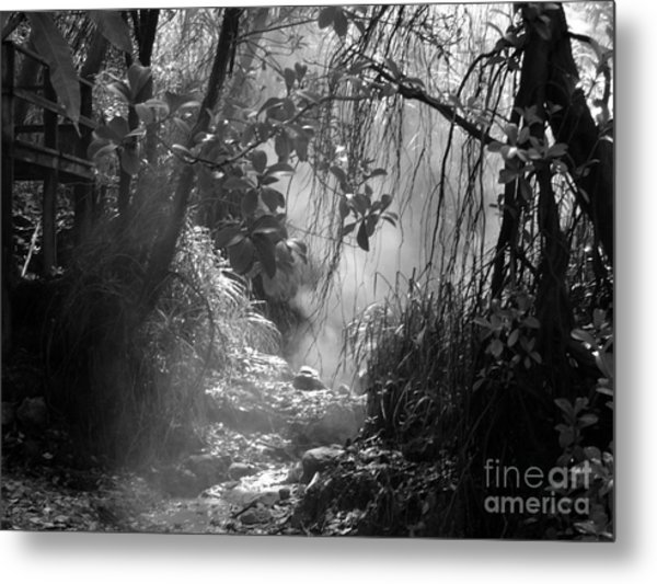 Mist In The Jungle Metal Print
