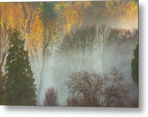 Mist In The Park Metal Print