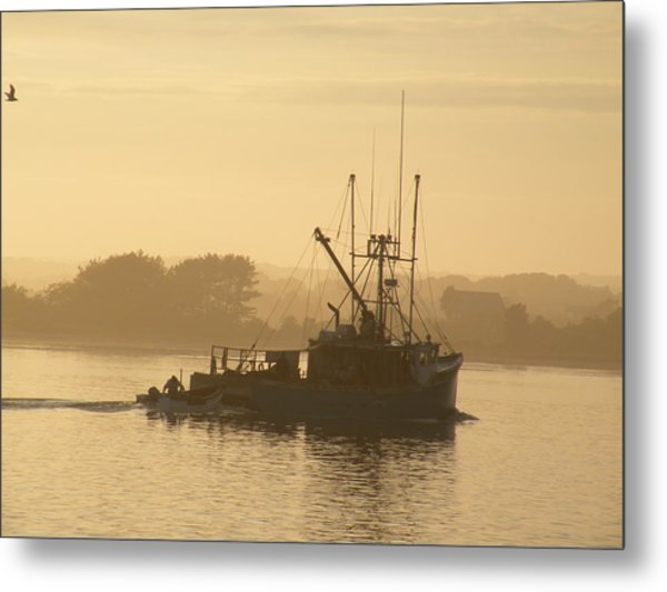 Mister G In The Mist Metal Print by Donald Cameron