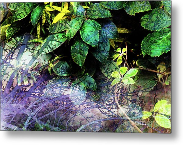 Misty Branches Metal Print