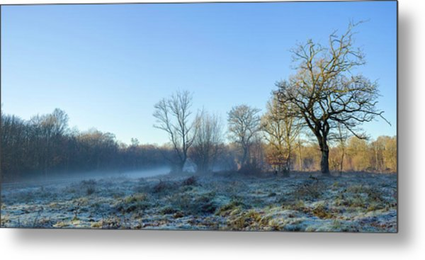 Misty Clearing Metal Print
